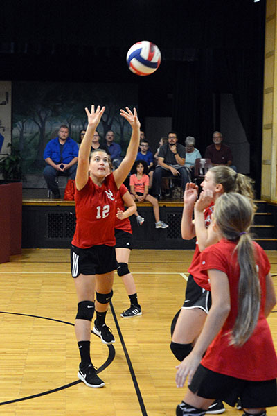 NCCS-girls-volleyball-1-2019